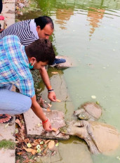 कोरोना संकट: भूखे बेजुबानों का सहारा बनी ABVP, तीन लाख पशुओं को मुहैया कराया आहार