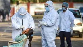 Coronavirus in India: देश में बढ़ा कोरोना का कोहराम, 24 घंटे में 7964 नए केस, 265 ने गंवाई जान
