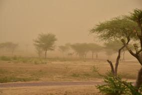 मौसम: पश्चिमी विक्षोभ के चलते दिल्ली एनसीआर में धूल भरी आंधी, बारिश