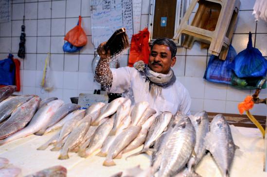 बिहार की मछलियों की होगी ब्रांडिंग, दूसरे राज्य भेजे जाएंगे ब्रीड