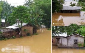 Weather: असम-मेघालय में भारी बारिश-बाढ़ से तबाही, भूस्खलन से 3 की मौत, ढाई लाख से ज्यादा लोग प्रभावित