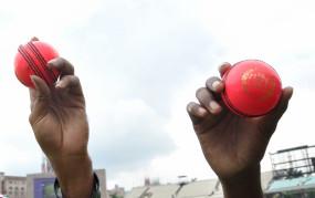 India vs Australia: सिडनी करेगा डे-नाइट टेस्ट मैच की मेजबानी