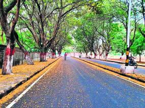 सबसे साफ रही नागपुर की हवा, पोल्यूशन 5 वर्ष के न्यूनतम स्तर पर