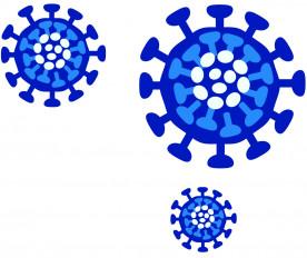 अमरावती में कोरोना संक्रमितों की संख्या 190 तक पहुंची