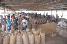 कृषि मंडी में सोशल डिस्टेसिंग की उड़ी धज्जियां -मंडी अधिकारियों ने दोपहर बाद ली सुध