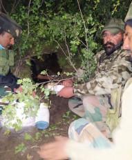 कश्मीर में आतंकी ठिकाने का भंडाफोड़, लश्कर सदस्य गिरफ्तार