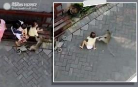 बाइक से आए बंदर ने मासूम बच्ची को पकड़ा और घसीटते हुए ले गया...देखें हैरान कर देने वाला वीडियो