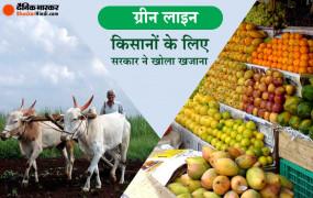 इकोनॉमी पैकेज का तीसरी इंस्टॉलमेंट: ऑपरेशन ग्रीन्स को मिलेंगे 500 करोड़, शामिल होंगी सभी फल व सब्जियां, किसानों को होगा फायदा