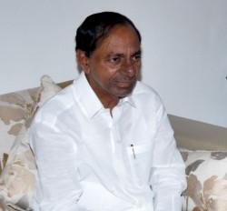 हैदराबाद विश्वविद्यालय के नाम में नरसिम्हा राव जोड़ें : केसीआर