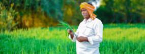 1 जुलाई से कृषि संजीवनी सप्ताह, फसल उत्पादन बढ़ाने और नई तकनीकी के बारे में देंगे मार्गदर्शन