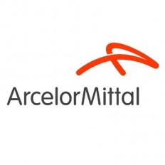 आर्सेलरमित्तल एंड निप्पन स्टील ओडिशा में 2000 करोड़ रुपये निवेश करेगी