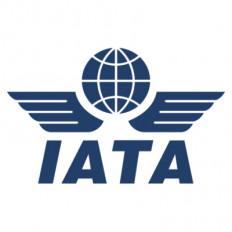विमानन कंपनियों को वैश्विक स्तर पर 2020 में 84.3 अरब डॉलर का नुकसान होगा : आईएटीए