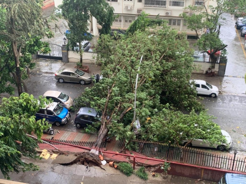 चक्रवात निसर्ग ने महाराष्ट्र में दी दस्तक, तेज हवा के साथ भारी बारिश