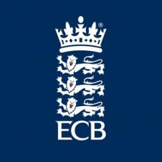ईसीबी ने कहा, कोरोनावायरस सब्सटीट्यूट पर चर्चा कर रही है आईसीसी