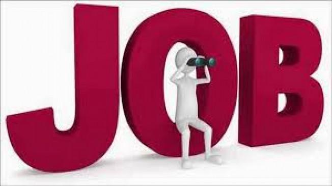 इस वेबसाईट परमिलेगी रोजगार की जानकारी, कौशल्य विकास विभाग ने लांच किया पोर्टल