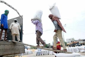 रिकॉर्ड स्तर पर गेहूं की सरकारी खरीद, किसानों को 73,500 करोड़ भुगतान