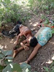 भरेवा में पति-पत्नी की गला रेत कर हत्या, झाड़ी में मिले शव