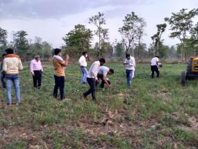 टिड्डियों ने की फसल चौपट - टीम सहित जांच करने पहुंचे सहायक संचालक कृषि