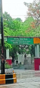नागपुर : FCI के पास रहने वाले हो गए त्रस्त, कान-नाक ही नहीं भोजन-कपड़े में भी घुस जाता है घुन