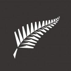 न्यूजीलैंड क्रिकेट के उप मुख्य कार्यकारी ने इस्तीफा दिया