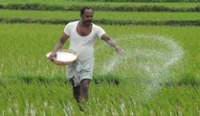 48 हजार में 6 हजार किसानों का अब तक नहीं हुआ वेरिफिकेशन, इन किसानों को नहीं मिलेगा फसल कर्ज