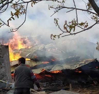 पाकिस्तान पुंछ नियंत्रण रेखा पर कर रहा तीव्र गोलाबारी