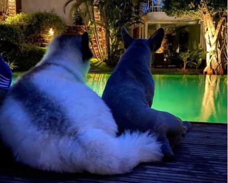 सामंथा अक्किनेनी ने अपने सबसे अच्छे दोस्त को याद किया