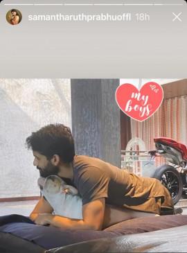 सामंथा अक्किनेनी ने अपने बॉयज की फोटो साझा की