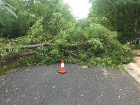 महावितरण को जोर का झटका : आंधी- तूफान से लाखों का नुकसान