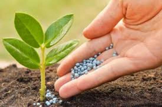 खाद, बीज, कीटनाशक की गुणवत्ता संबधी शिकायतों के लिए तहसील स्तरीय समिति, कृषि अधिकारी होंगे प्रमुख