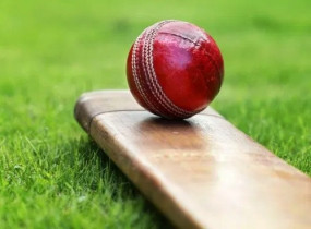 क्रिकेट: सरे के मुख्य कोच बने विक्रम सोलंकी