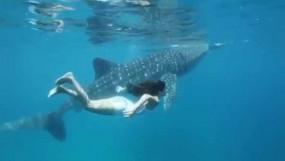 जब अपने सबसे असाधारण मित्र के साथ तैरने गईं कैटरीना