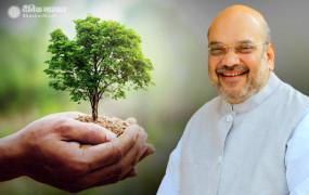 दिल्ली: अमित शाह ने अपने आवास पर पौधा लगाकर किया 'वृक्षारोपण अभियान 2020' का शुभारंभ