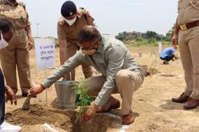 गौतमबुद्धनगर में 9.17 लाख पौधे लगाने का लक्ष्य
