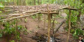 Naxal: ओडिशा में 4 नक्सली शिविरों का भंडाफोड़, गोला बारूद बरामद