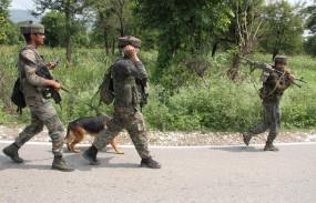 जम्मू-कश्मीर में इस साल सुरक्षाबलों की शहादत में 50 फीसदी की गिरावट (आईएएनएस एक्सक्लूसिव)