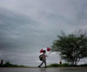 मानसून के दोबारा सक्रिय होने की संभावना, नागपुर में भी बारिश का दौर