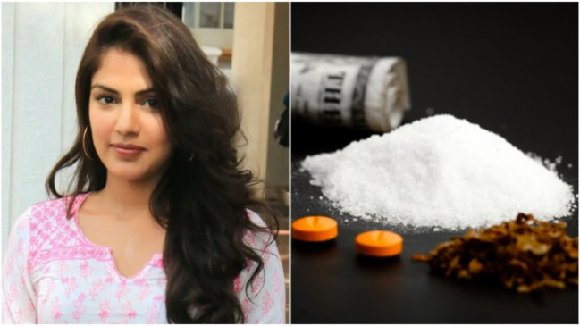 NCB register case against Riya Chakraborty, Shovik and Shruti Modi | SSR  Death: ड्रग एंगल सामने आने के बाद NCB ने दर्ज किया केस, रिया चक्रवर्ती,  शोविक और श्रुति मोदी के नाम