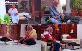 प्रधानमंत्री मोदी का प्रकृति प्रेम, मोर को दाना खिलाते हुए इंस्टाग्राम पर शेयर किया वीडियो