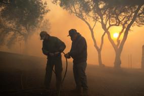 उत्तरी कैलिफोर्निया के जंगल में लगी आग पर 40 फीसदी तक काबू पाया गया