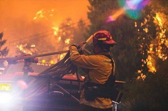 अमेरिका के ओरेगन जंगल में लगी आग में 10 लोगों की मौत