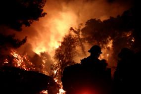 उत्तरी कैलिफोर्निया के जंगल में आग लगने से 3 की मौत