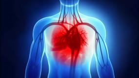 Health: 5 टिप्स जो आपको हर्ट फेलियर को मैनेज करने में मदद करेगी