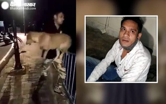 भोपाल: तालाब में कुत्ते को फेंकने वाले आरोपी सलमान को पुलिस ने किया गिरफ्तार