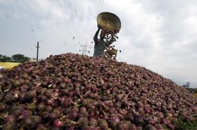 कांग्रेस सांसद ने की प्याज निर्यात से प्रतिबंध हटाने की मांग