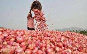 Onion Export Ban: देश में 50 रुपए किलो प्याज के भाव, केंद्र सरकार ने देश से बाहर निर्यात पर तत्काल प्रभाव से लगाई रोक