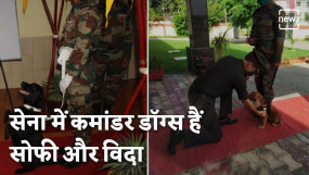 PM Modi Praises Indian Special Forces Dog 'VIDA' and 'SOPHIE'