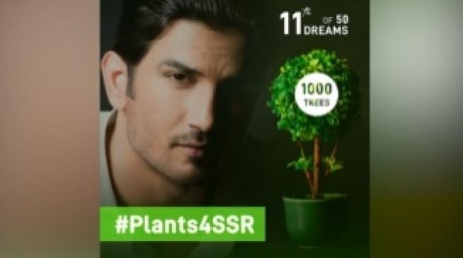 सुशांत के नाम पर दुनियाभर में 1 लाख से ज्यादा पौधे रोपे गए : श्वेता