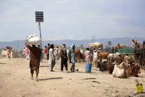 अफगानिस्तान, ईरान सीमाओं के पास बाजार स्थापित करेगा पाक