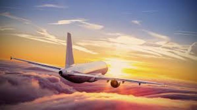 विमान में यात्री बेहोश, नागपुर में उतारा